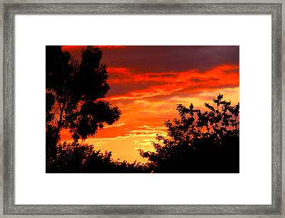 Sunset Sky Framed Print by Duke Brito