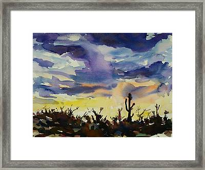 Sunset Sonora Framed Print by Xueling Zou