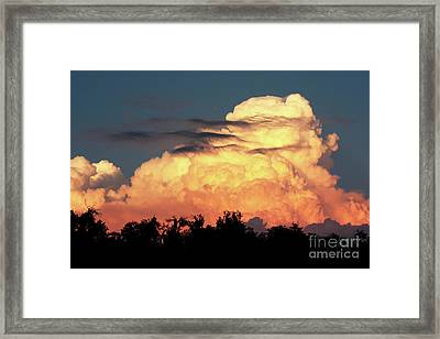 Sunset Storm Clouds Over The Marsh Framed Print by Carol Groenen