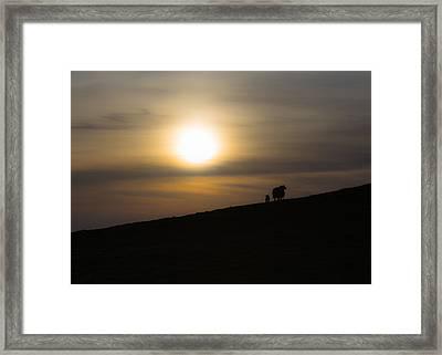 Sunset Watchers Framed Print by Chris Fletcher