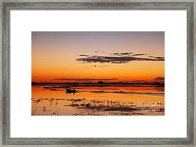 Sunset With Boat At Chobe River, Botsuana Framed Print by Wibke W