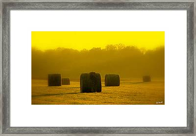 Sunshine Rolls Framed Print by Ed Smith