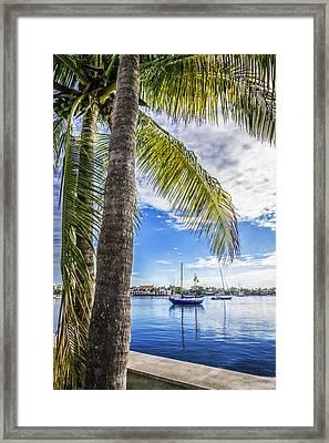 Sunshine Sailing Framed Print by Debra and Dave Vanderlaan