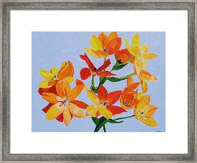 Framed Print featuring the painting Sunstar by Rodney Campbell