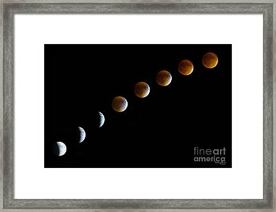 Super Blood Moon Time Lapse Framed Print by Jennifer White