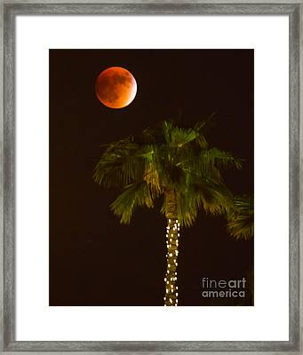 Super-harvest Blood Moon Framed Print by Amy Sorvillo