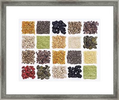 Superfood Grid Framed Print by Tim Gainey
