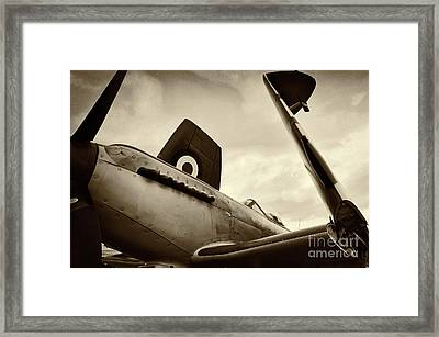 Supermarine Seafire Framed Print by Richard Allen