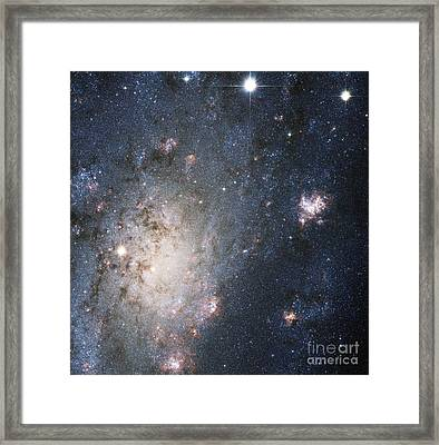 Supernova 2004dj, Outskirts Of Ngc 2403 Framed Print by Science Source