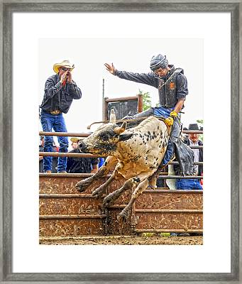 Support From The Sidelines Framed Print by Ron  McGinnis