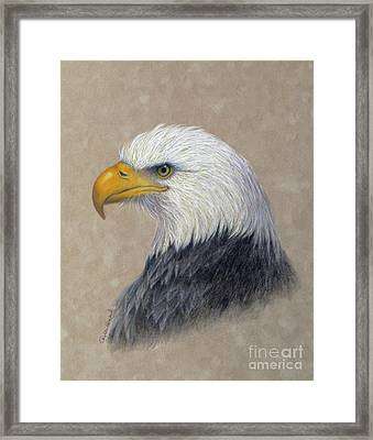 Supremacy Framed Print by Phyllis Howard