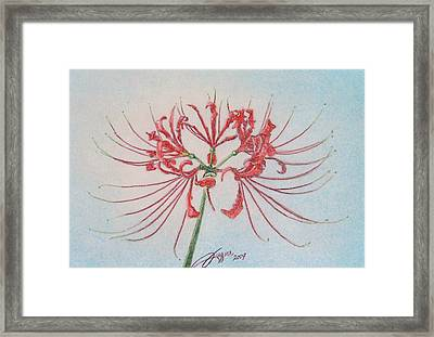 Surprise Lily Framed Print by Beverly Fuqua