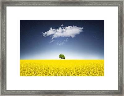 Surreal Canola Field Framed Print by Bess Hamiti