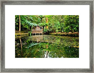Surrounded By Nature Framed Print by Az Jackson