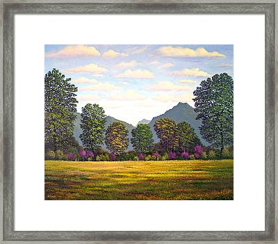 Sutter Buttes In Springtime Framed Print by Frank Wilson
