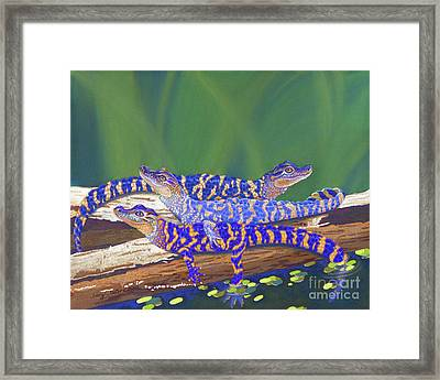 Swamp Babies Framed Print by Tracy L Teeter
