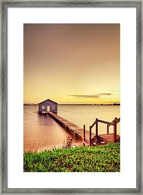 Swan River Framed Print by Jimmy Chong