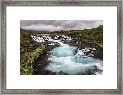 Sweet Blue Framed Print by Jon Glaser