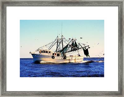 Sweet Carolina Framed Print by Karen Wiles