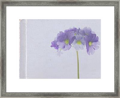 Sweet Memories Framed Print by Rebecca Cozart