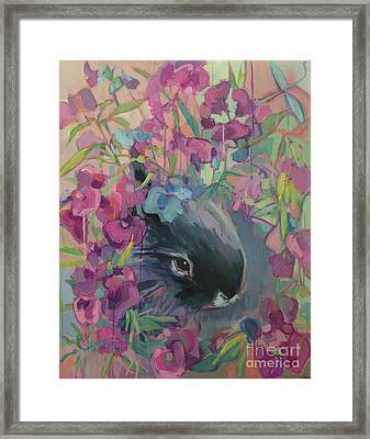 Sweet Pea Framed Print by Kimberly Santini