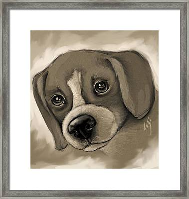 Sweet Puppy Framed Print by Veronica Minozzi