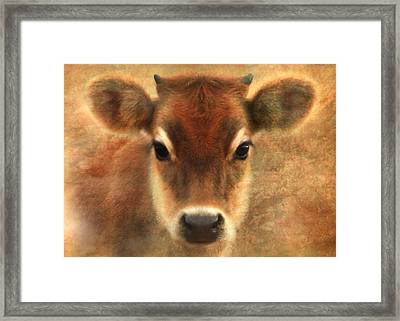Sweet Sweet Baby Framed Print by Trudi Simmonds