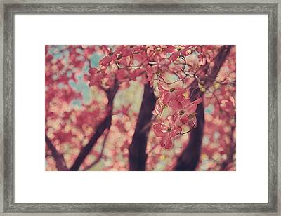 Sweet Sweet Love Framed Print by Laurie Search