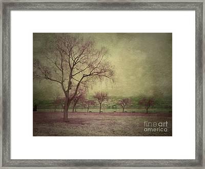 Sweetly Framed Print by Tara Turner
