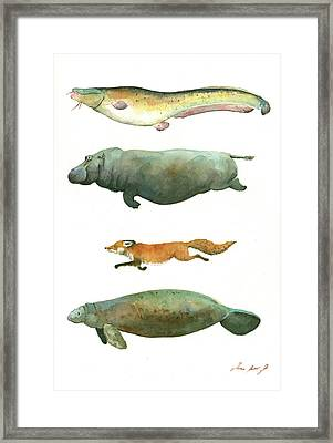 Swimming Animals Framed Print by Juan Bosco