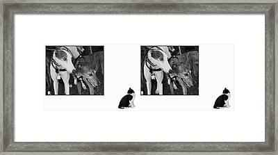 Sworn Enemies - Gently Cross Your Eyes And Focus On The Middle Image Framed Print by Brian Wallace