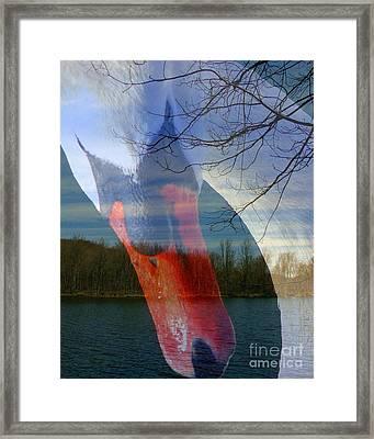 Symbiosis Framed Print by Priscilla Richardson