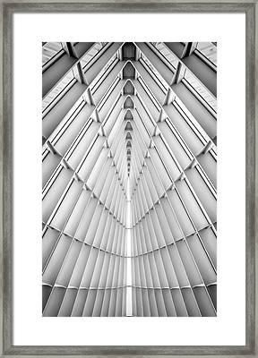 Symmetry Framed Print by Scott Norris