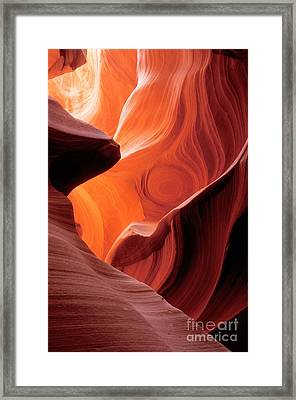 Symphony Of Light Framed Print by Sandra Bronstein