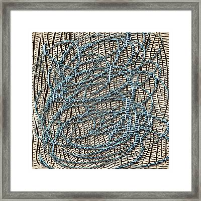 Synergy Framed Print by Becky Titus