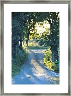 Take Me Home Framed Print by Jan Amiss Photography