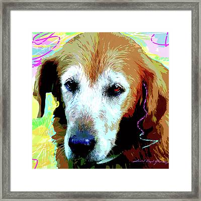 Take Me Please Framed Print by David Lloyd Glover