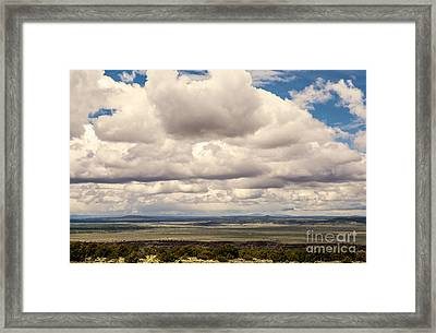 Take Me With You Framed Print by Roselynne Broussard