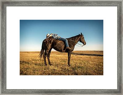 Taking A Snooze Framed Print by Todd Klassy