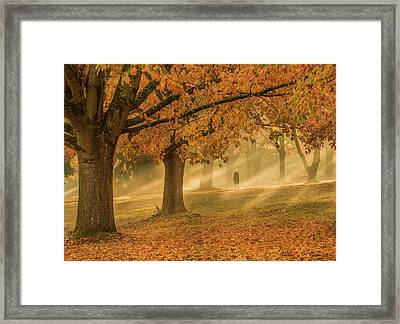 Taking Time To Think Framed Print by Landon Spady