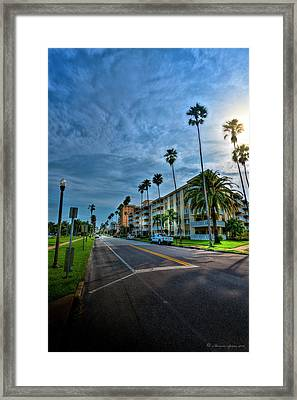 Tall Palms Framed Print by Marvin Spates