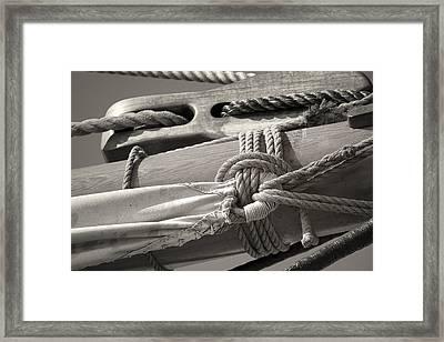 Tall Ship Sail Cloth Sepia Framed Print by Dapixara Art