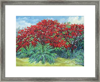 Tamarind Framed Print by Danielle Perry
