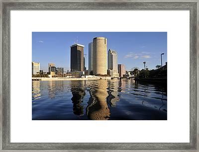 Tampa Florida 2010 Framed Print by David Lee Thompson
