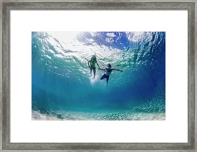 Tandem Swim Framed Print by Sean Davey