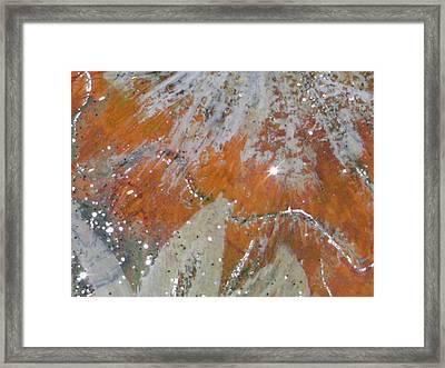 Tangy Twinkles Framed Print by Anne-Elizabeth Whiteway
