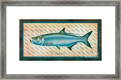Tarpon Framed Print by Jon Q Wright