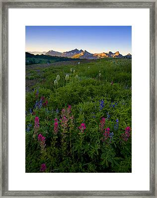 Tatoosh Dawn Framed Print by Mike  Dawson