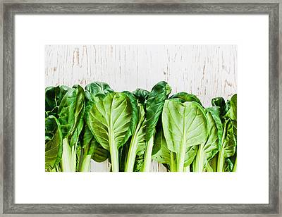 Tatsoi Framed Print by Tom Gowanlock