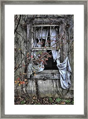 Tattered Curtain Fall '09 No.2 Framed Print by Sari Sauls